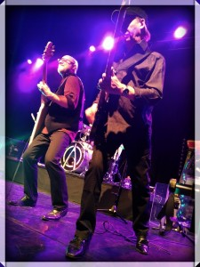 2016-03-WishboneAsh-02